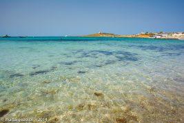 Armier Bay, la spiaggia dei maltesi